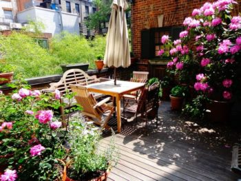 Terrace with wood decking, shrubs with pink blossoms and bamboo